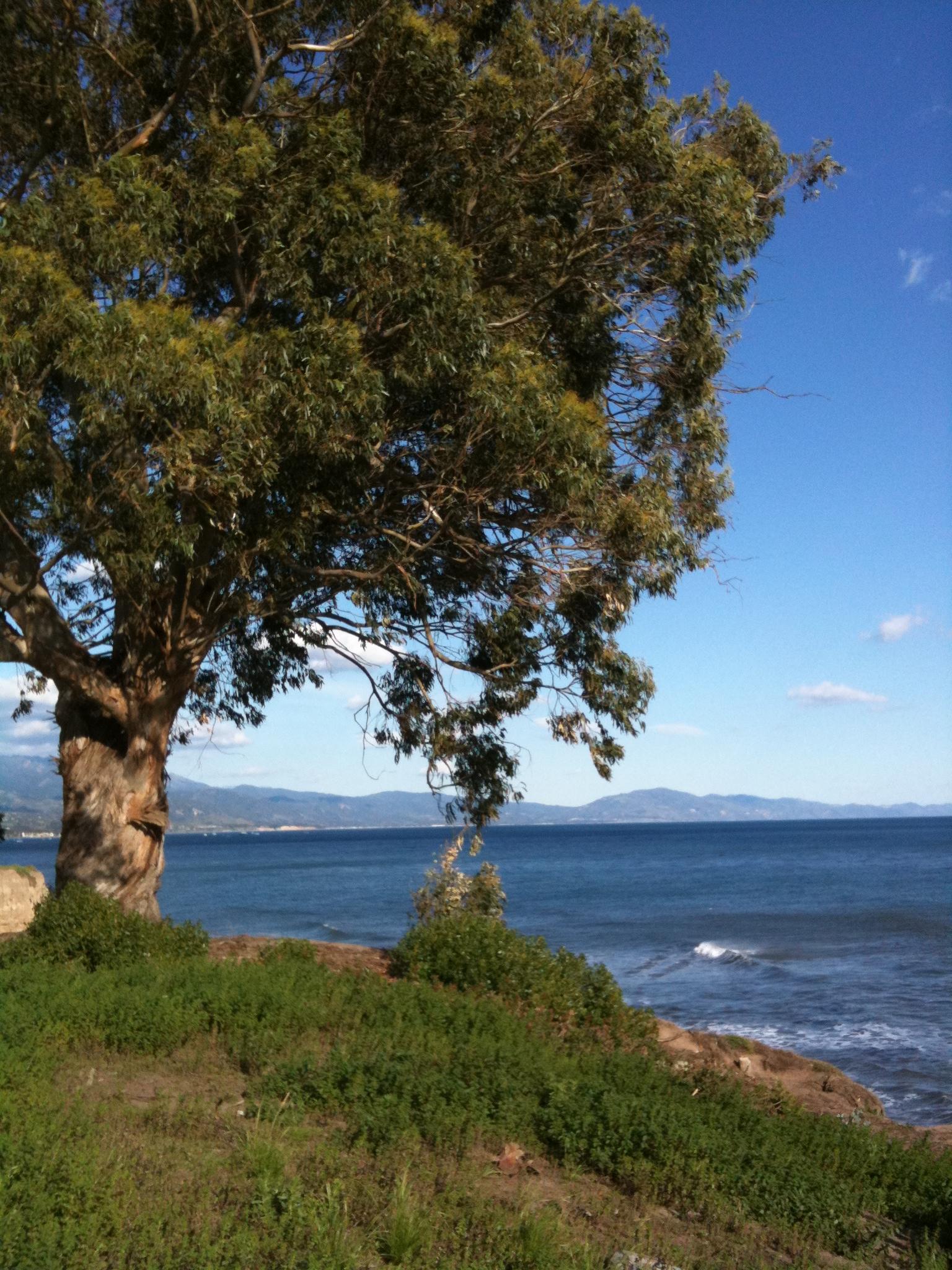 Staycation - Santa Barbara