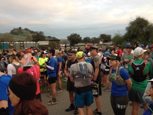 Start of Sean O'Brien Marathon  and 50K 2015